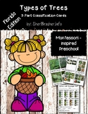 Montessori 3 Part Classification Cards: Types of Trees in Florida