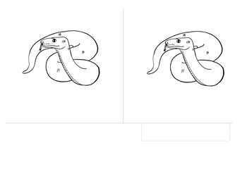 Montessori 3 Part Scientific Nomenclature Cards:  Parts of the Snake