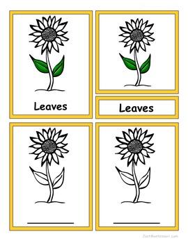 Montessori 3-Part Sunflower Matching Cards