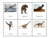 Montessori 3 part Language Cards - Dinosaurs
