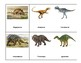 Montessori 3 part Language Cards, Full Set - Dinosaurs