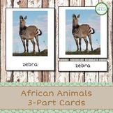 Montessori African Animals 3-Part Cards