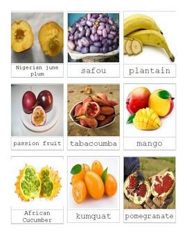 Montessori African Fruit 3 Part Cards Language Continent Study