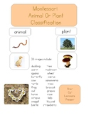 Montessori Animal or Plant Classification