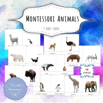 Montessori Animals 3 part FLASHCARDS