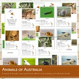 Montessori Animals of Australia 3 Part Cards and Fact Cards