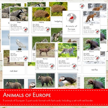 Montessori Animals of Europe 3 Part Cards and Fact Cards