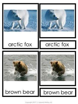 Montessori Animals of the Polar Regions 3 Part Cards