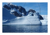 Montessori Antarctica Puzzles
