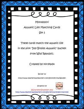 Montessori Aquatic Life 3-Part Cards Set 1