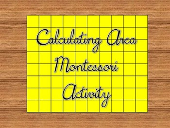 Montessori Area Activity