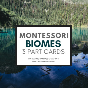 Montessori Biomes of the World 3 Part Cards