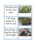 Montessori Blue Series - Simple Sentence Matching