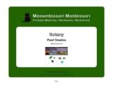 Montessori Botany: Plant Timeline Introduction Worksheet