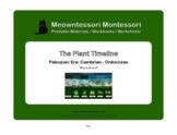 Montessori Botany: The Plant Timeline: Cambrian-Ordovician Worksheet