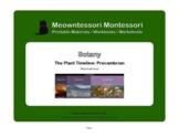 Montessori Botany: The Plant Timeline: Precambrian Worksheet