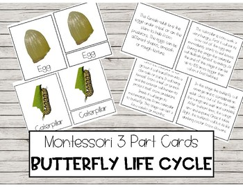 Montessori Butterfly Life Cycle - 3 Part Cards
