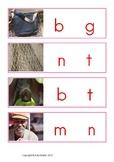 Montessori CVC Missing Vowel
