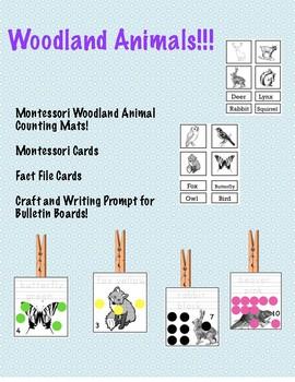 Montessori Cards and Mats! *Woodland Animals