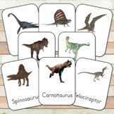 Montessori Carnivorous Dinosaurs 3 Part Cards
