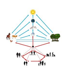 Montessori Chart of Interdependency