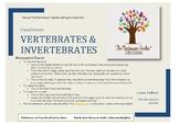 Montessori Classification: Vertebrates and Invertebrates