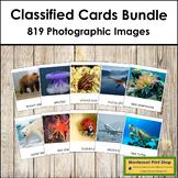 Montessori Classified Cards Bundle