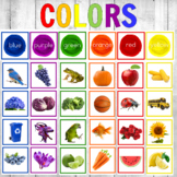 Montessori Color Sorting Cards Real Photos