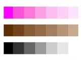 Montessori Color Work