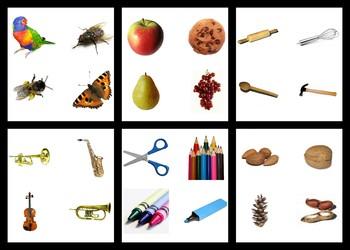 Montessori COMPARISON CARDS - Compare, Contrast, Like, Different, Discussion