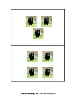 Montessori Counters - Bear Theme