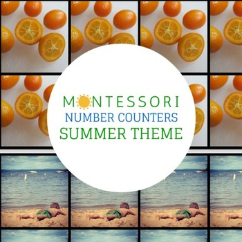 Montessori Counters - Summer Theme