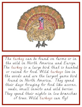 Montessori Definition Book: Turkey
