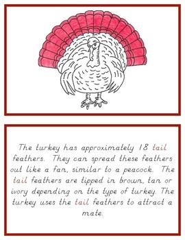 Montessori Definition Book: Turkey