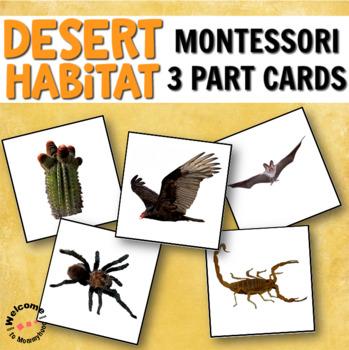 Montessori Desert 3 Part Cards