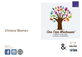Montessori Discussion Cards: Chinese Biomes
