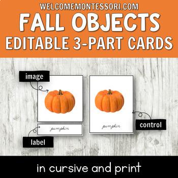 Montessori Fall 3 Part Cards