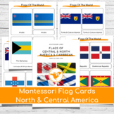Montessori Flags Of South America - 3 part cards and mini