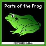 Montessori - Frog 3 Part Nomenclature Cards & Interactive Boom Cards