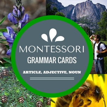 Montessori Grammar Cards with Article, Adjective, and Noun (REAL IMAGES)
