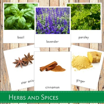 Montessori Herbs and Spices 3 Part Cards