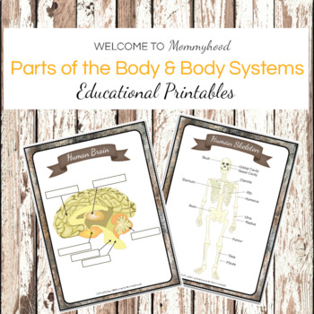 Montessori Human Body Printables: body systems and organs posters and labeling