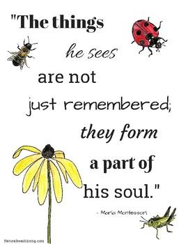 Montessori Inspirational Quote