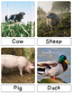 Montessori Inspired 3 Part & Classification Cards: Farm Life - English Pack