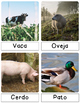 Montessori Inspired 3 Part & Classification Cards: Farm Life - Spanish Pack