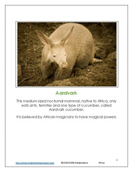 Montessori Inspired Geography Africa Write the Room A to Z 3 part cards
