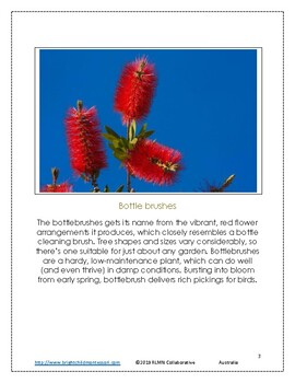Montessori Inspired Geography Australia Write the Room A to Z 3 part cards
