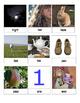 Montessori Inspired Homophone Matching Cards