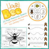 20 Page Honey Bee Preschool Bundle