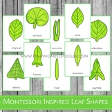 Leaf Shapes Montessori 3 Part Cards